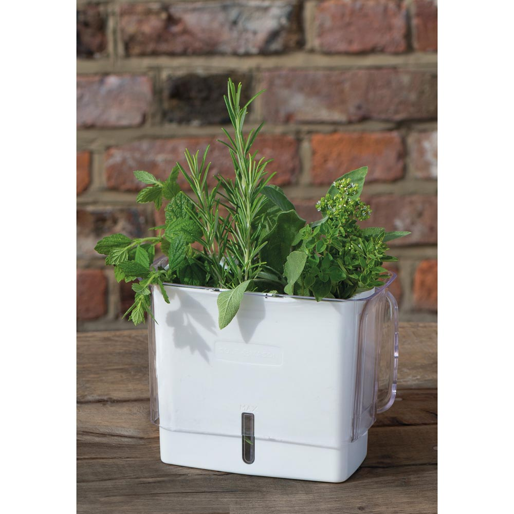 Cole & Mason Fresh Herb Keeper
